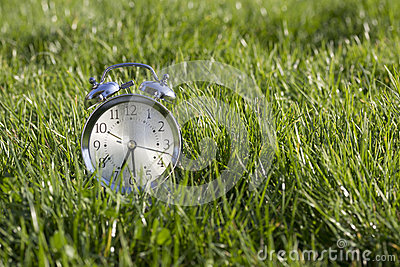 Clock in  grass