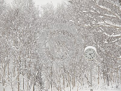 Clock in the park in winter