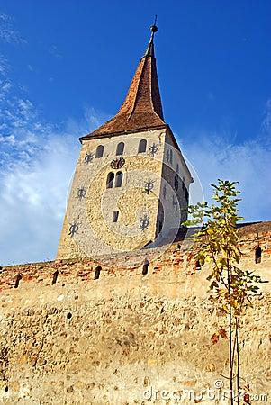 Free Clock Tower And Brick Wall Of Ancient Citadel Royalty Free Stock Image - 16687906