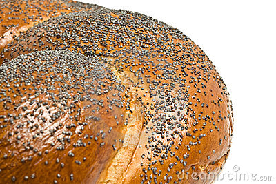 Close-up of bagel with poppy seeds
