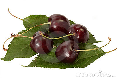 Close Up of Black Cherries