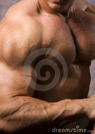 Close-up of a bodybuilder torso