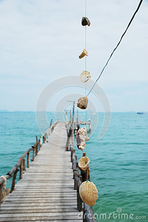 Close up clam and wooden pier