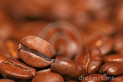 Close up of coffee bean on coffee s background