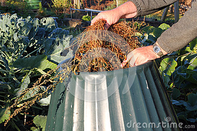Close up of compost bin being filled.