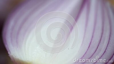 A close up of a cup. High quality footage stock video