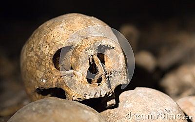 Close up de um crânio velho nos catacombs em Paris