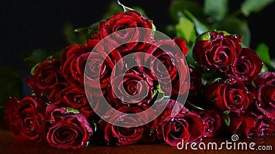 Close up de Valentine Red Roses filme