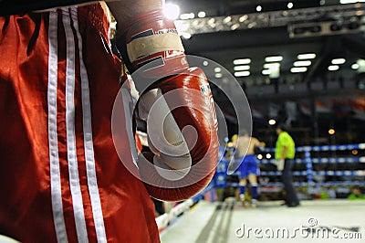 Muaythai World Championships Editorial Stock Image