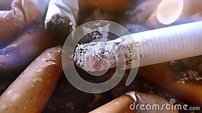 Close up do cinzeiro vídeos de arquivo
