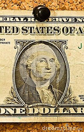 Close Up Dollar on Cork