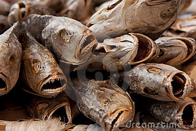 Close-up of dried salted fish