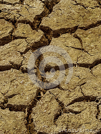 Close up dry cracked soil dirt  during drought