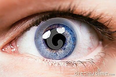 Close-up eye