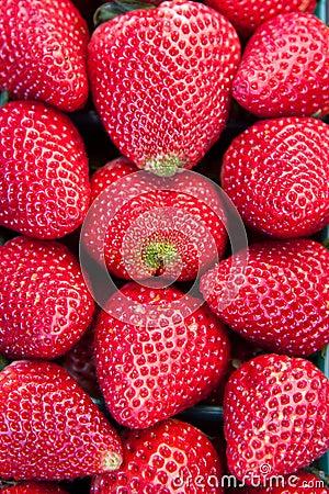 Close up of Fresh ripe Strawberries