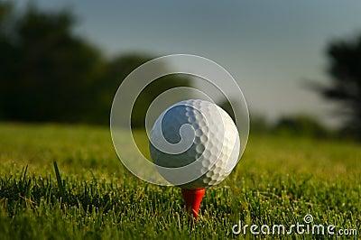 Close up of  a golf ball on a tee