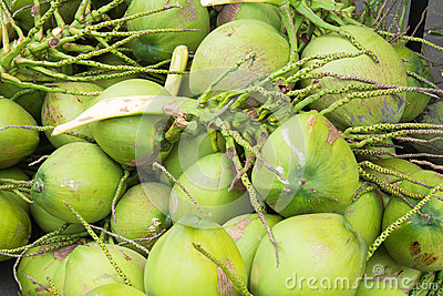 Close up green coconuts