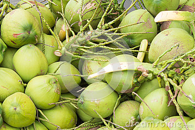 Close up green coconuts