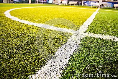 Close up green grass for football sport,