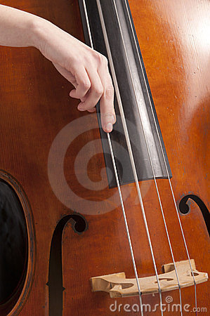 Close-up on hand on double bass