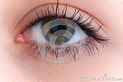 Close Up Of The Human Eye Royalty Free Stock Photo - Image ...