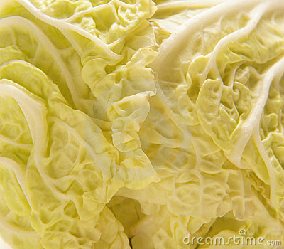 A close-up image of a fresh Chinese cabbage