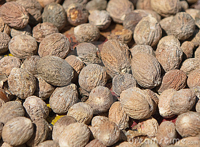 Close up image of nutmeg