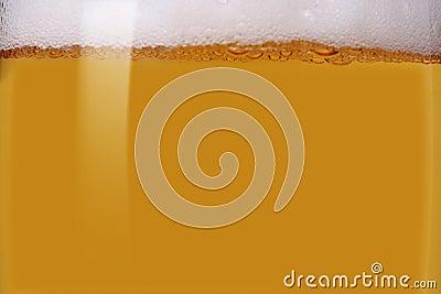 Close-up of light bier
