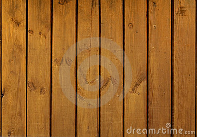 Close-up of light wood texture