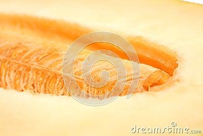 Close-up melon background