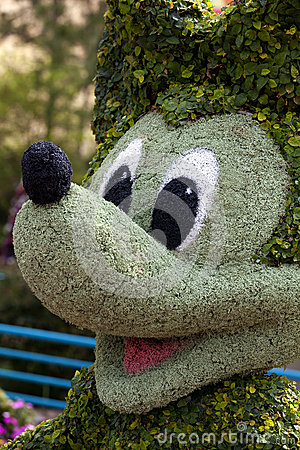 Mickey Mouse Topiary Editorial Image