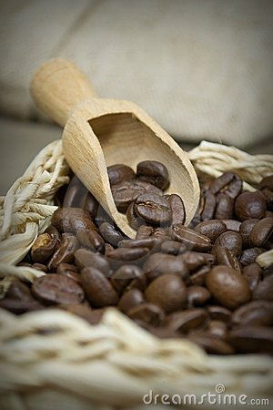 Free Close Up Of Coffee Beans Royalty Free Stock Photos - 23554588