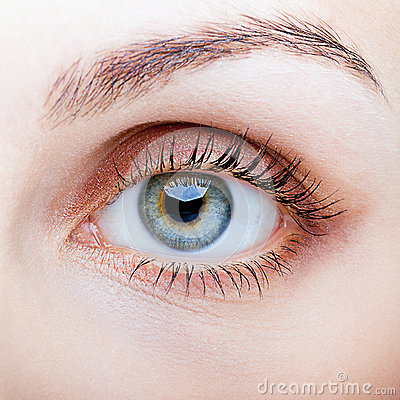Free Close-up Of Female Face With Eye Makeup Royalty Free Stock Photo - 58249035