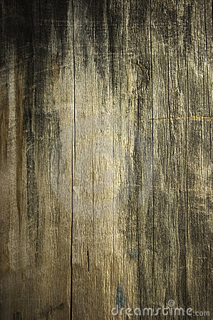 Free Close Up Of  Retro-styled Wooden Texture Stock Photos - 8486543