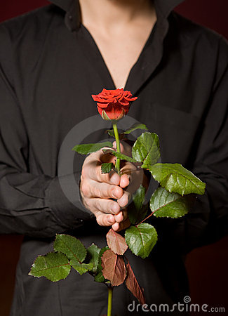 Free Close Up Of Young Man With Rose In Black Shirt Royalty Free Stock Photo - 12167635