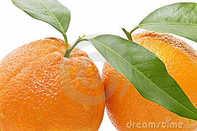 Close-up of oranges with leaves