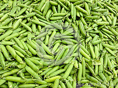 Close-up of pea pods
