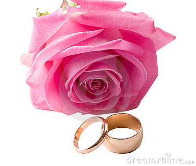 Close-up pink rose and two wedding rings
