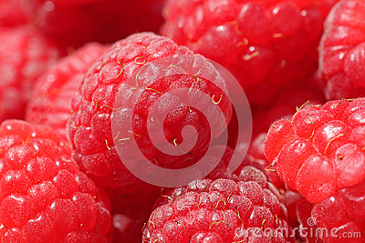 Close up of raspberry