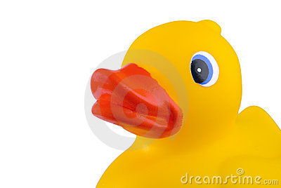 Close up of rubber duck toy