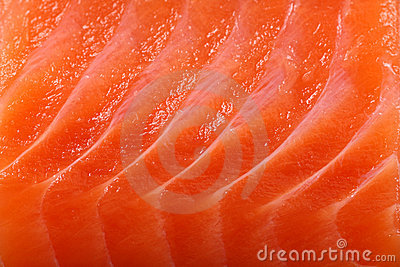 Close-up salmon