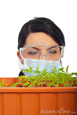 Close up of scientist examine new plants leaf