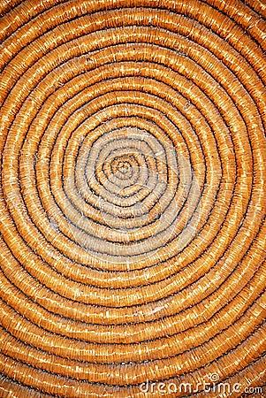 Circle texture