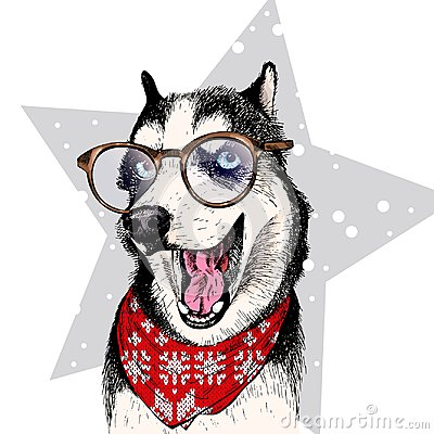 Free Close Up Vector Portrait Of Siberian Husky Dog Wears Winter Bandana And Glasses. Isolated On Star. Skecthed Color Stock Photography - 101704422