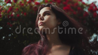 Close up view of a beautiful brunette young woman standing by the blossoming bush of red roses and looking far away. Romantic atmosphere, dreamy mood. Natural stock video footage