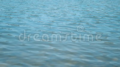 Tripod: Fixed view on a softly rippled sea, close up. Close up view on rippled water scene, fixed camera stock footage
