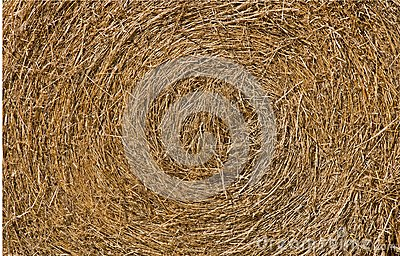 Close up view of a round hay bale