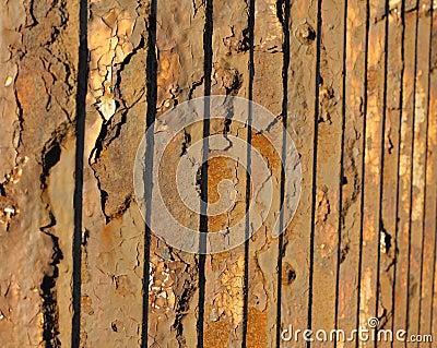 Old metal fence