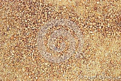 Close view coconut palm sugar