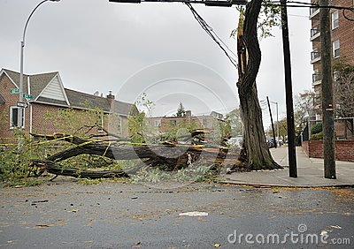 A closed street after Hurricane Sandy Editorial Stock Image